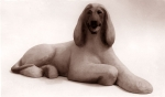 Afghan hound lying, artificial stone, 48 cm, 1985