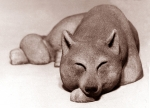 Sleeping wolf, artificial stone, 57 cm, 1975